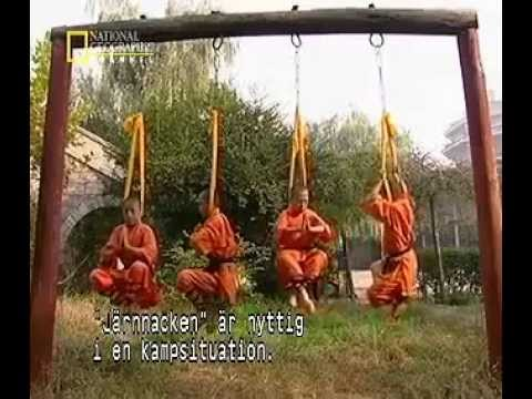 Myths And Logic Of Shaolin Kung Fu Image 1