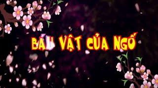 Hài Tết | Báu Vật Của Ngố | Phim Hài Hiệp Gà , Quang Tèo