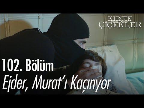Ejder, Murat'ı kaçırıyor - Kırgın Çiçekler 102. Bölüm