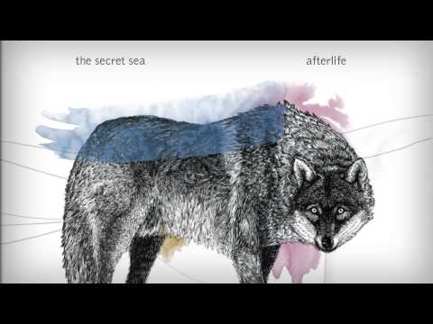 The Secret Sea - Afterlife