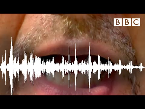 Try The McGurk Effect! - Horizon: Is Seeing Believing? - BBC Two