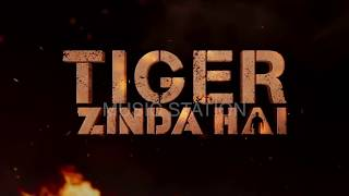 download lagu Mann Mera  Tiger Zinda Hai  Salman Khan gratis