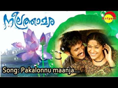 Free Blue Of Archana Kavi MP4 Video Download
