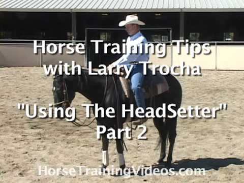 Horse Training Tips - Using A HeadSetter, part 2
