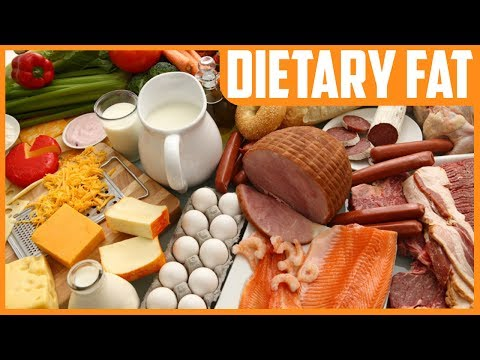 Dietary Fat (Unsaturated & Saturated) and Cardiovascular Disease Risk, New Research