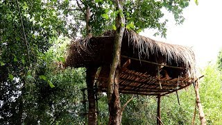 Build Treehouse In Forest