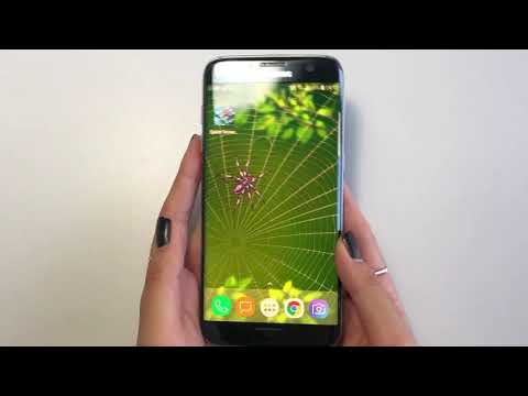 Spider on Screen Live Wallpaper for Prank thumb