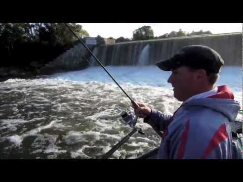 Oswego River Fall Salmon Fishing