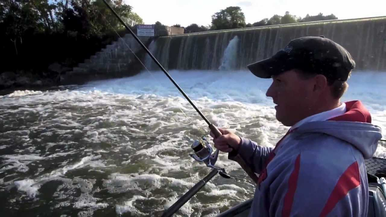 Oswego river fall salmon fishing youtube for Oswego river fishing report