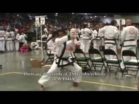 Gihae Tang Soo Do Aruba, World Championships 2012 Image 1