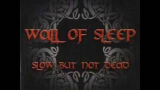 Watch Wall Of Sleep I Sleep video