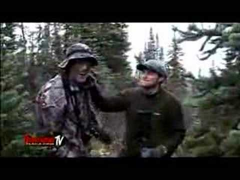 Moose Hunting Danger !!! Video