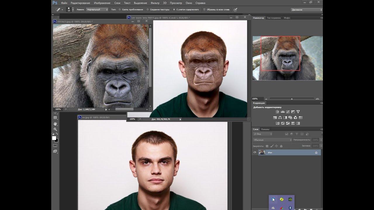 Как сделать человека похожим в фотошопе