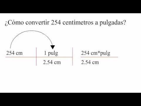 centimetros a pie: