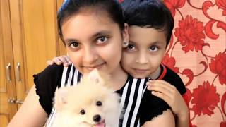 Aayu and pihu show cute and funny pictures