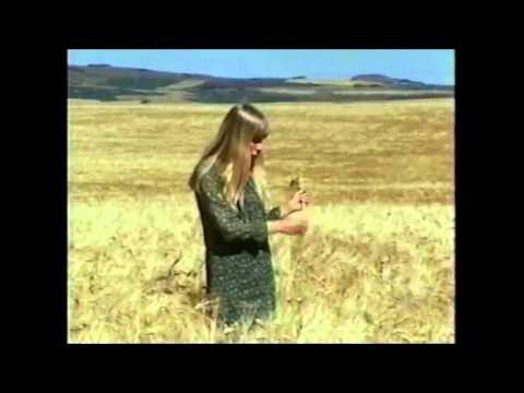 Joni Mitchell - Come To The Sunshine