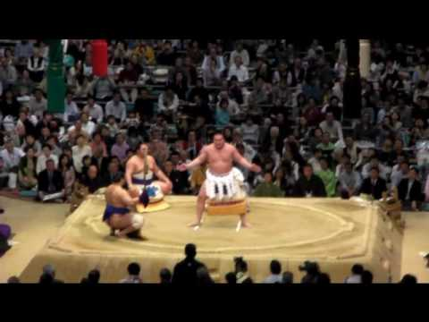 The process of sumo
