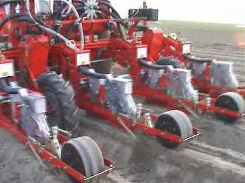 Sembradora de zanahorias Agricola Italiana SNT 2 290