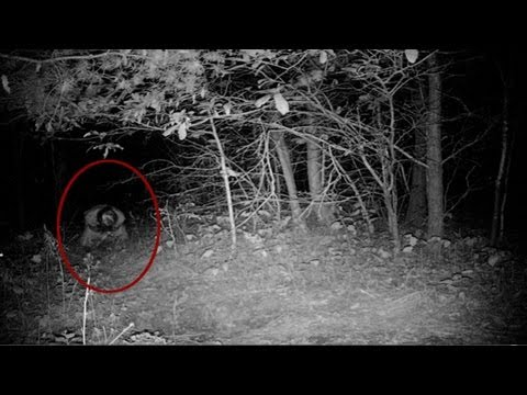 "UNEXPLAINED Real Scary Demon Attacks Guy Going to the Toilet ""Disturbing Footage"