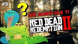 #3 ALLIGATOR, SERPENT : OÙ LES CHASSER ? RED DEAD REDEMPTION 2