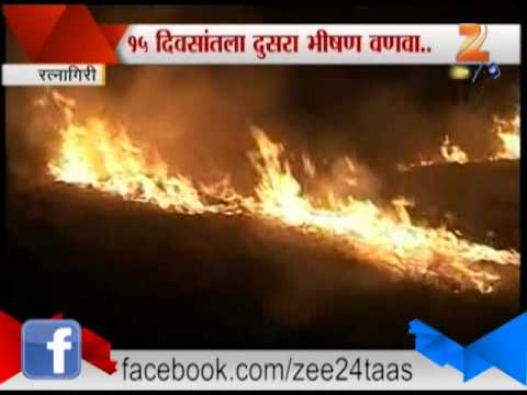 Zee24taas : Bhoste Gavajaval Vanva Petla video