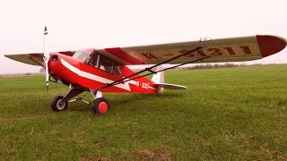 Piper Pa-18 nach TC Plan