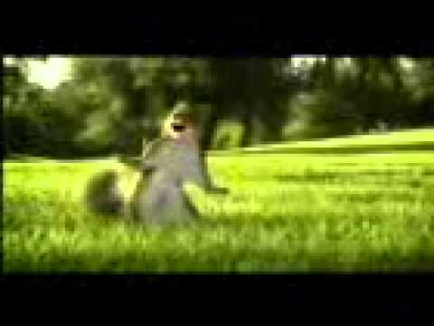 Title     Youtube       New Kit Kat Ad With Animated Squirrel ( Break Banta Hhai ).3gp video
