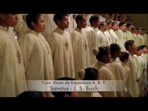 Бах Иоганн Себастьян - Sanctus, BWV 325
