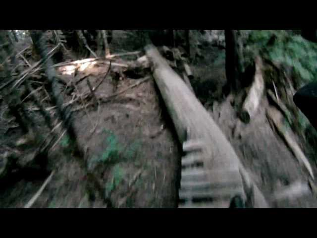 Cypress Mystery DH