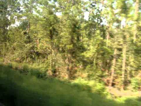 Amtrak Silver Meteor #98 Ride Jacksonville, FL to Folkston, GA