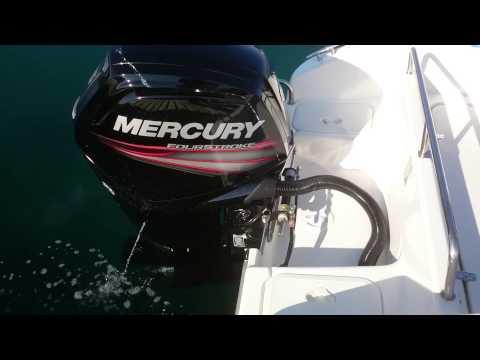 Mercury F115 P Tomgang