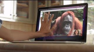 AMAZING! Orangutan asks girl for help in sign language
