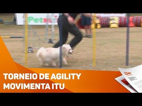 Torneio de agility movimenta Itu - TV SOROCABA/SBT
