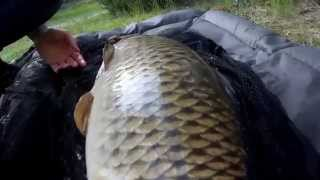 Carpfishing  2014
