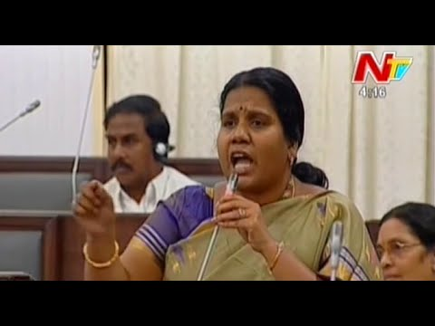 TDP MLA Peethala Sujatha Fires on Roja in AP Assembly