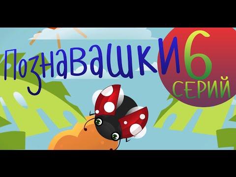 Мультфильмы для детей - Познавашки - Развивающие мультфильмы Все Серии подряд!