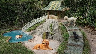 Building most beautiful Mini Swimming Pool and Bamboo Dogs House