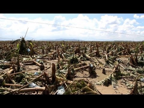 Typhoon reduces Philippine farmers to beggars