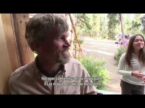 Alimentos únicos en el Yukon, Canada