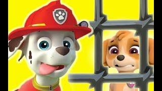 Psi Patrol Po Polsku Bajki Dla Dzieci Zabawna Dla Dzieci Psi Patrol Po Polsku 2018 Odcinki 15