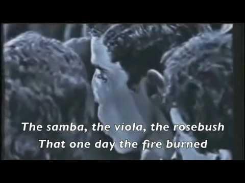 Roda Viva (English Lyrics)
