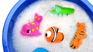 Learn Colors with Monkey Wild Animals Bath Time | Colors For Kid Children
