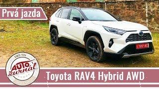 Toyota RAV4 Hybrid 2WD/4WD 2019 TEST