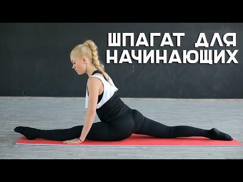 Шпагат для начинающих [Workout | Будь в форме]