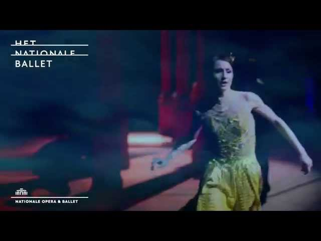 Cinderella: Trailer - Het Nationale Ballet | Dutch National Ballet