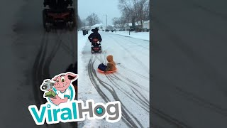 Fun in the Snow || ViralHog