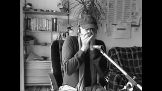 Le Wolf - JJ Milteau Blues Harmonica + how to play TAB