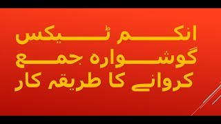 How to File Income Tax Return for in Pakistan ? (Step by Step for Salaried Person)