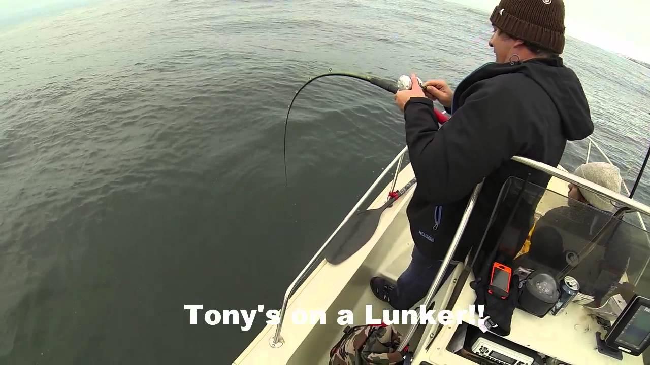 Fishing santa cruz 10 10 14 youtube for Santa cruz fishing report