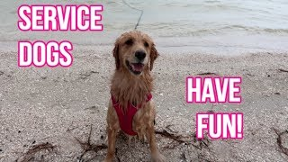 🐕 Service Dog OFF DUTY: Fun at the Beach! 🌊